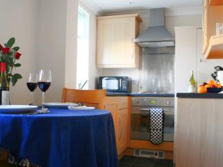 Comfortable 1 bedroom Cambridge Condo with Internet Access - Cambridge vacation rentals