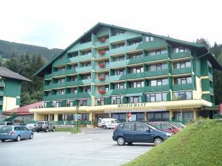 Appartamento privato Romiti - Schladming vacation rentals