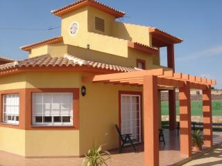 Beautiful Villa with Internet Access and A/C - Totana vacation rentals