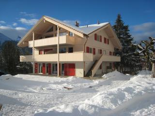 Wonderful Mountain Chalet With Fabulous Views - Wengen vacation rentals