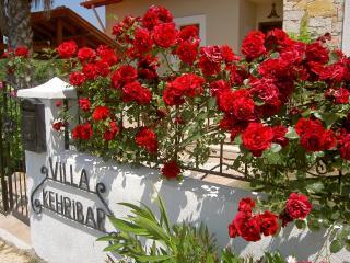 Gorgeous 3 bedroom Villa in Dalyan - Dalyan vacation rentals