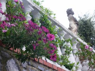 VILLA OASI   incanto tra ulivi e mare a Laigueglia - Laigueglia vacation rentals
