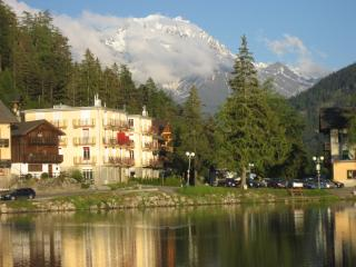 Bright 3 bedroom Champex Condo with Internet Access - Champex vacation rentals