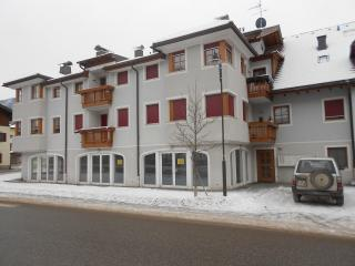casa soleggiata a villabassa - Bolzano vacation rentals