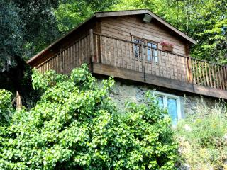 Olive Tree Lodge - Falicon vacation rentals