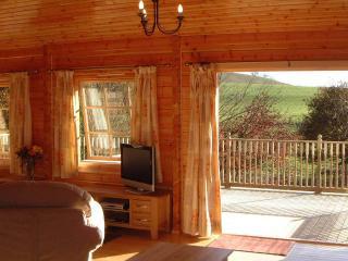 2 bedroom Cabin with Deck in Llangunllo - Llangunllo vacation rentals