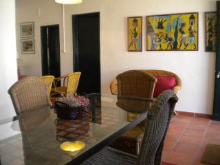 Bright 3 bedroom Apartment in Santarem with Internet Access - Santarem vacation rentals