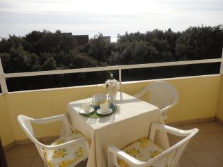 2 bedroom Apartment with Internet Access in Petrcane - Petrcane vacation rentals