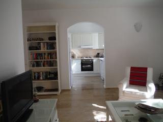 Nice Condo with Internet Access and A/C - Turunc vacation rentals