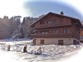 Chalet Kassy - Morillon vacation rentals