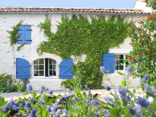 Affordable luxury with the comforts of home - L'Ancienne Distillerie-Martell - Cognac vacation rentals
