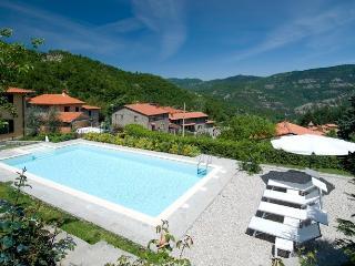 Villa La Fonte: exclusive Tuscan villa with pristine pool, sleeps 6 - San Godenzo vacation rentals