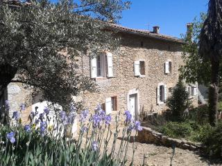 Stone farmhouse near Anduze South of France - Anduze vacation rentals