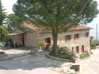 Perfect 3 bedroom Farmhouse Barn in Rufina with Internet Access - Rufina vacation rentals