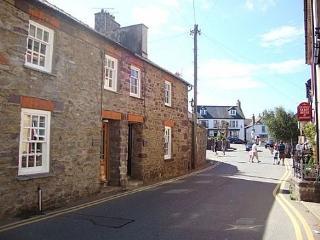 Bwthyn Clyd St Davids - 30269 - Saint Davids vacation rentals