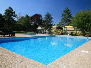 Cassiopeia Lovely 3 bedroom gite near La Rochelle - Villeneuve la Comtesse vacation rentals