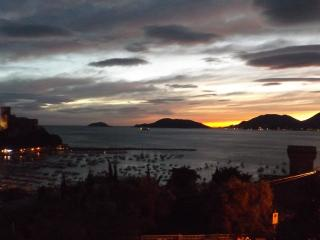 breathtaking view- 2 minutes walk from sea -7olivi - Lerici vacation rentals