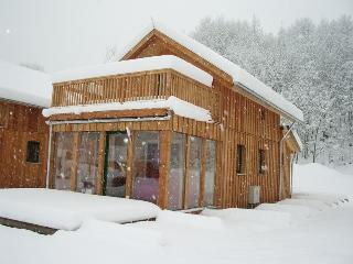 Perfect Ski chalet in Stadl an der Mur with Dishwasher, sleeps 7 - Stadl an der Mur vacation rentals
