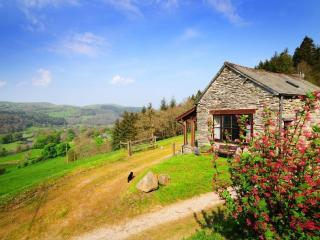 1 bedroom Barn with Internet Access in Llandderfel - Llandderfel vacation rentals