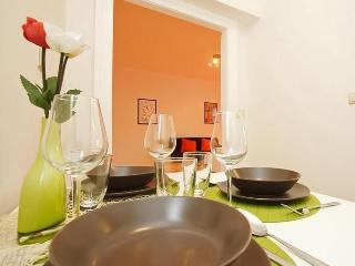 Apartment+park. in city centr - Prague vacation rentals