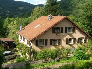 Cozy Gite with Satellite Or Cable TV and Swing Set - Le Ménil vacation rentals