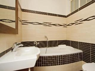 Big apartment,800m Wenc.Sq. Cheap! - Prague vacation rentals