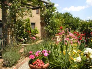 Adorable Tuscan cottage with beautiful garden just outside Lucca, sleeps 2 - Sant'Andrea di Compito vacation rentals