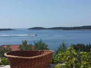 Apartment Maxim Hvar - Hvar vacation rentals