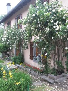 Charming Le Ménil Gite rental with Kettle - Le Ménil vacation rentals