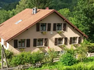 2 bedroom Gite with Central Heating in Le Ménil - Le Ménil vacation rentals