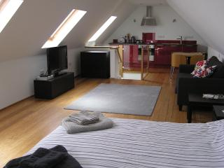 Beautiful Studio with Washing Machine and Microwave - Frome vacation rentals