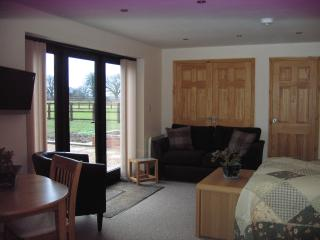 Romantic Spalding vacation Apartment with Internet Access - Spalding vacation rentals