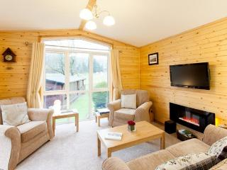 Bright 2 bedroom Lodge in Windermere - Windermere vacation rentals