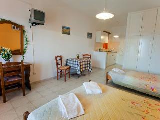 1 bedroom Condo with Internet Access in Drios - Drios vacation rentals