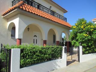 Beautiful Villa with Deck and Internet Access - Avgorou vacation rentals