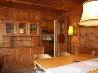 Brucker Bundestrasse 2 - Zell am See vacation rentals
