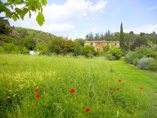 Lovely Gite with Internet Access and Central Heating - Caunes-Minervois vacation rentals