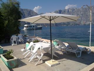 Seaside apartments in Kotor - Kotor vacation rentals