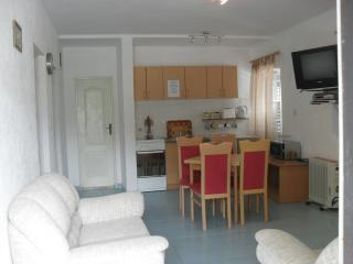 Comfortable 2 bedroom Kotor Condo with Internet Access - Kotor vacation rentals