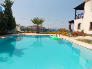 Bodrum privat villla with pool, wifi sauna - Gumusluk vacation rentals