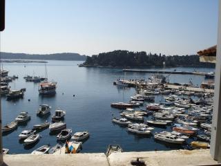Sea view in heart of Rovinj - Rovinj vacation rentals