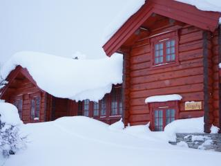4 bedroom Cabin with Internet Access in Venabygd - Venabygd vacation rentals