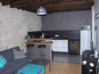 1 bedroom Apartment with Internet Access in Fontainebleau - Fontainebleau vacation rentals