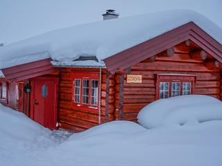 Nice 1 bedroom Cabin in Venabygd - Venabygd vacation rentals