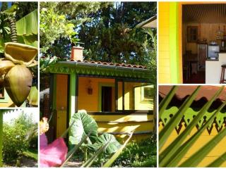 2 bedroom House with Dishwasher in Thuir - Thuir vacation rentals