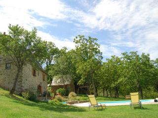 Charming 3 bedroom Cottage in Grand-Vabre - Grand-Vabre vacation rentals