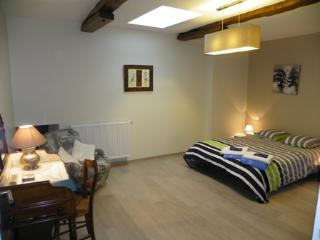 Nice Bed and Breakfast with Internet Access and Central Heating - Laparrouquial vacation rentals