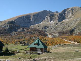 Luxury Mountain Chalet v.near ski lifts & Zabljak - Zabljak vacation rentals