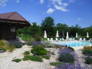 Magnolia - Le Jardin des Amis - Saint-Cyprien vacation rentals