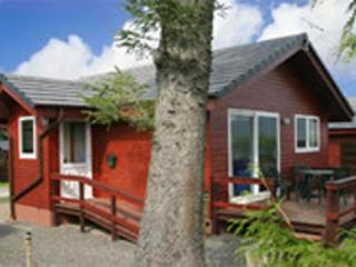 Heron Lodge on the edge of Mabie Forest, Dumfries - Dumfries vacation rentals